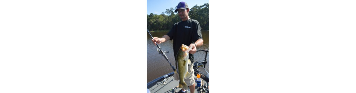 Paddle Tail Swimbait And The Rod To Use